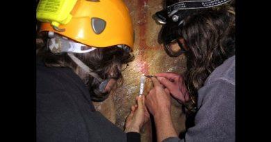 Primeras pinturas rupestres son neandertales, no humanas: estudio