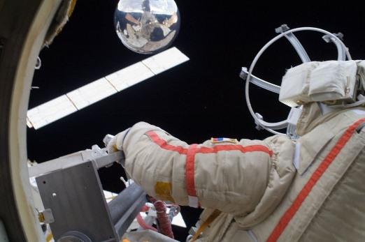 Inicia Proyecto 'Icarus' para observar animales desde el espacio