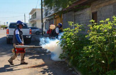 Campaña permanente de la lucha contra el dengue